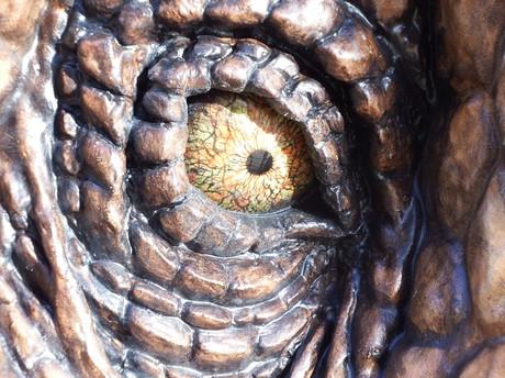 Dinosaur20141219uchida4