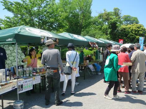 岡崎公園(2015年5月5日)