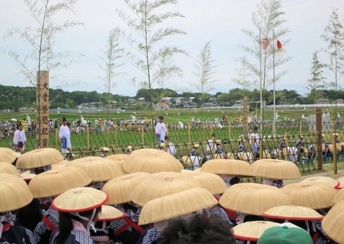 六ツ美悠紀斎田100周年記念お田植えまつり
