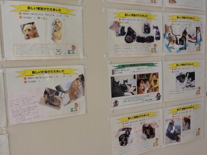 岡崎市動物総合センター「あにも」