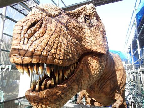 Dinosaur20141219uchida1