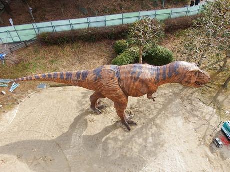 Dinosaur20150129uchida1