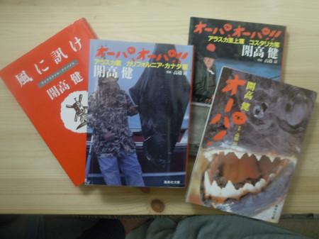 Chigasaki2015050324