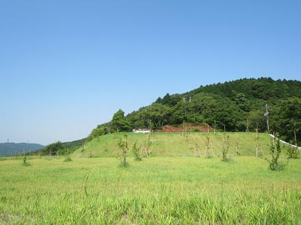 岡崎市・桑谷山荘跡地