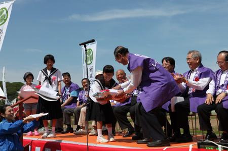 家康公四百年祭田んぼアート(2015年5月24日)