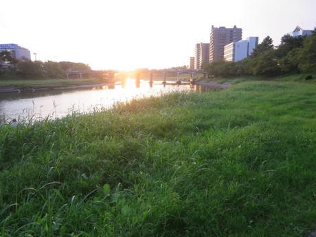 岡崎市・乙川