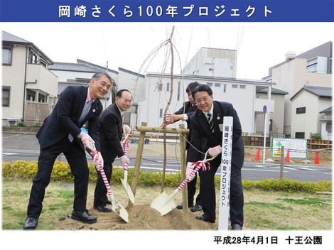 岡崎さくら100年プロジェクト