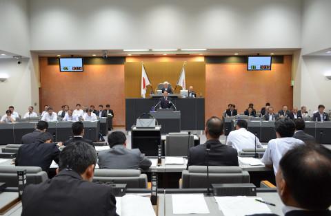 岡崎市議会(平成29年6月定例会)