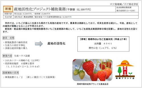 Okazakicitybudget2019621