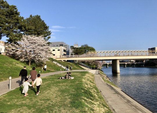 Sakuranoshirobashi20211
