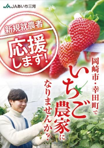 Strawberry201910072